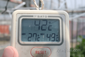 折戸茄子ハウス温度