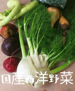 国産西洋野菜